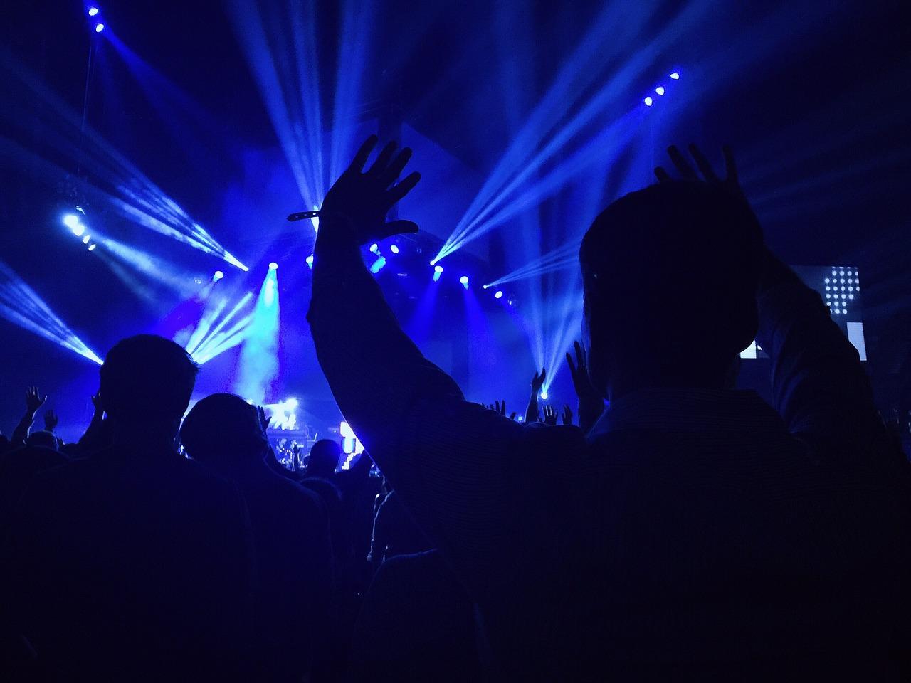 音楽フェスで盛り上がる人の後ろ姿